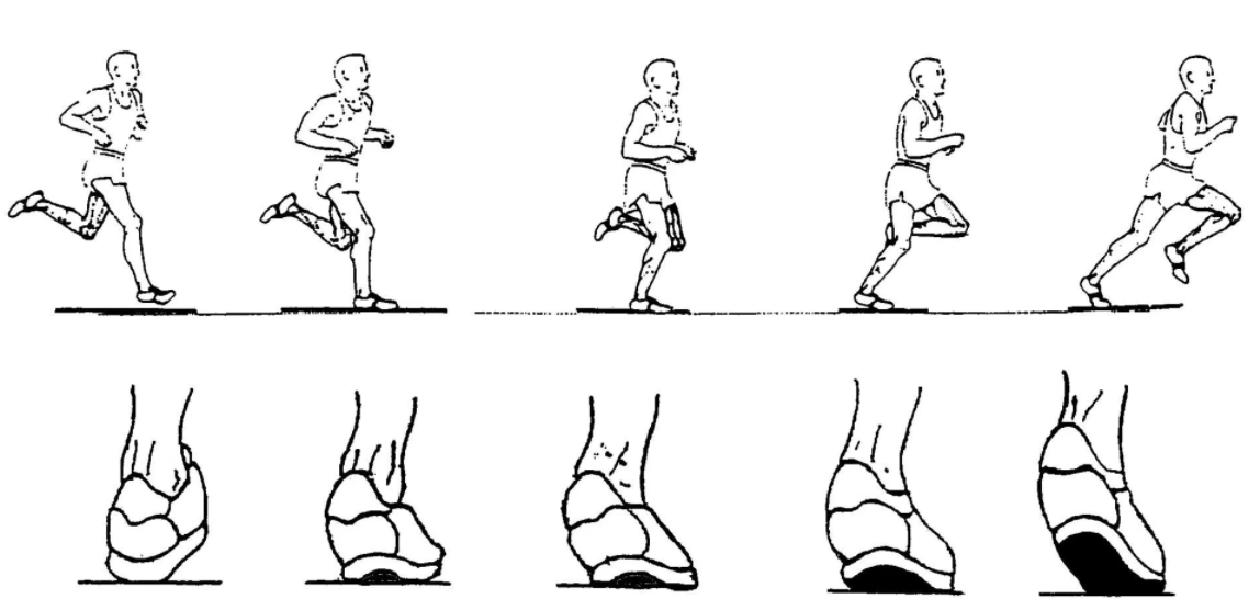 heel mobility and related back pain